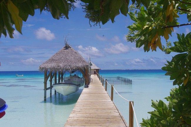 Voyage de noces, direction la Polynésie !