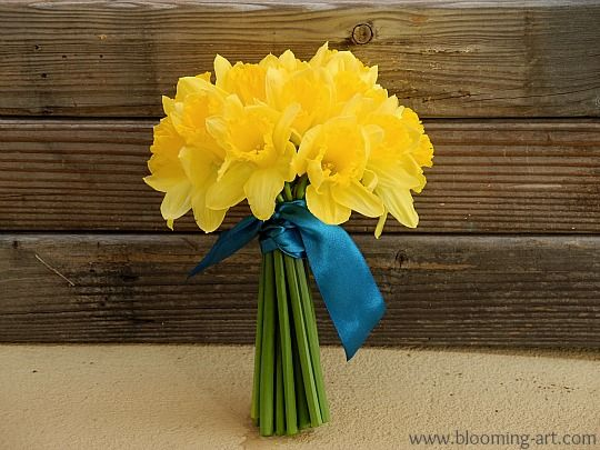 Daffodil bouquet for a spring wedding. We could manage this? Save on wedding flowers and just have ribbon?