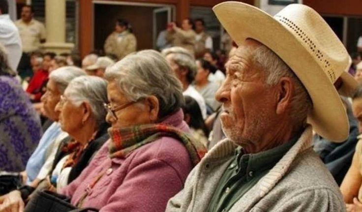 Si es adulto mayor, solicite pensión