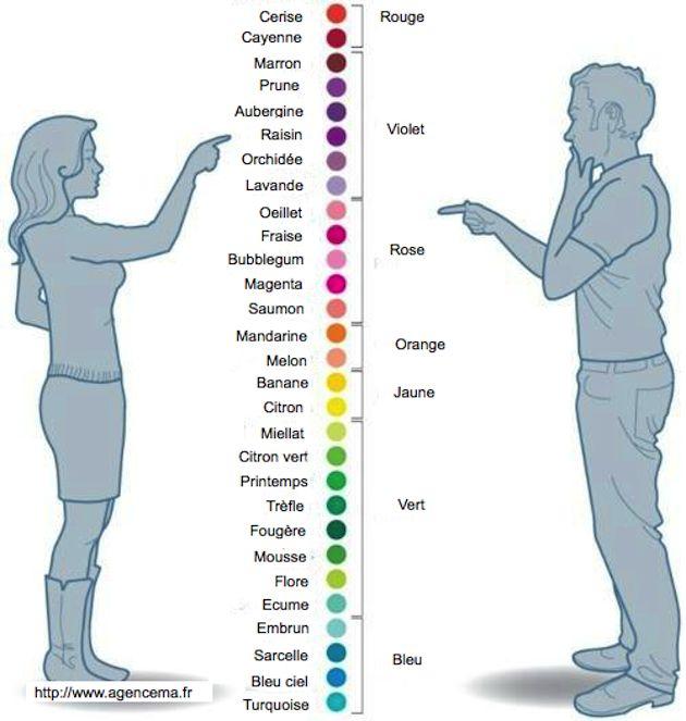 Convertisseur de couleur pour comprendre les couleurs des femmes - Convertisseur Homme / femme |