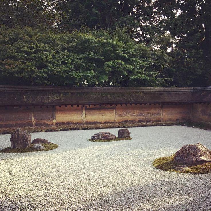8年ぶりの龍安寺 #龍安寺 #石庭 #京都 #ryoanji #rockgarden #kyoto