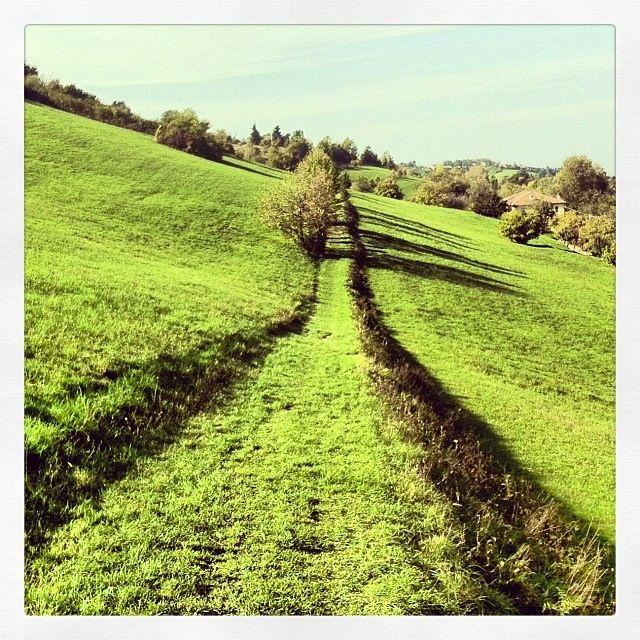 @frachick Colli Bolognesi, Ogni strada è soltanto una tra un milione di strade possibili | #myER_andMe: foto finaliste