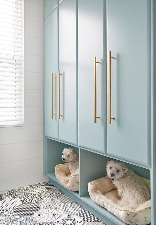 White and black mosaic floor tiles lead to stacked tall blue laundry room cabinets in Gossamer Blue by Benjamin Moore accented with brass pulls and fixed above built in dog beds.
