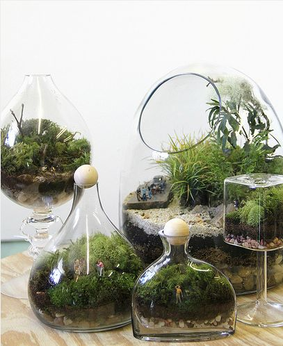 easy terrarium: Little People, Earthy Decor Diy, Indoor Gardens, Houses Stuff, Twigterrarium, Diy Terrarium, Twig Terrarium, Easy Terrarium, Indoor Plants