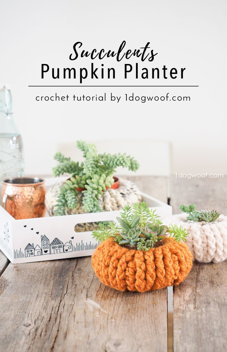Add to your fall decor with these crocheted pumpkin planters. They make great pots for succulents! Free crochet pattern at 1dogwoof.com