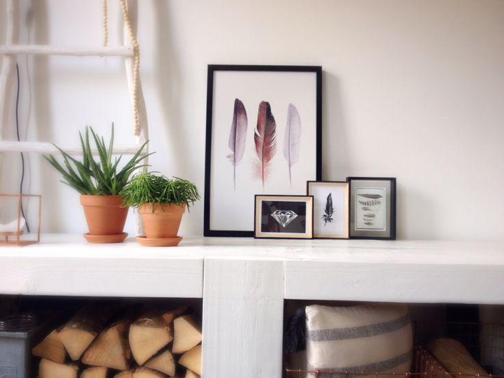 Paintings&Plants