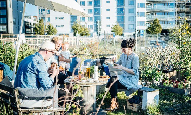 Den urbane gartneren Will Oldfield og IKEA-teamet nyter nyinnhøstet mat fra hagen