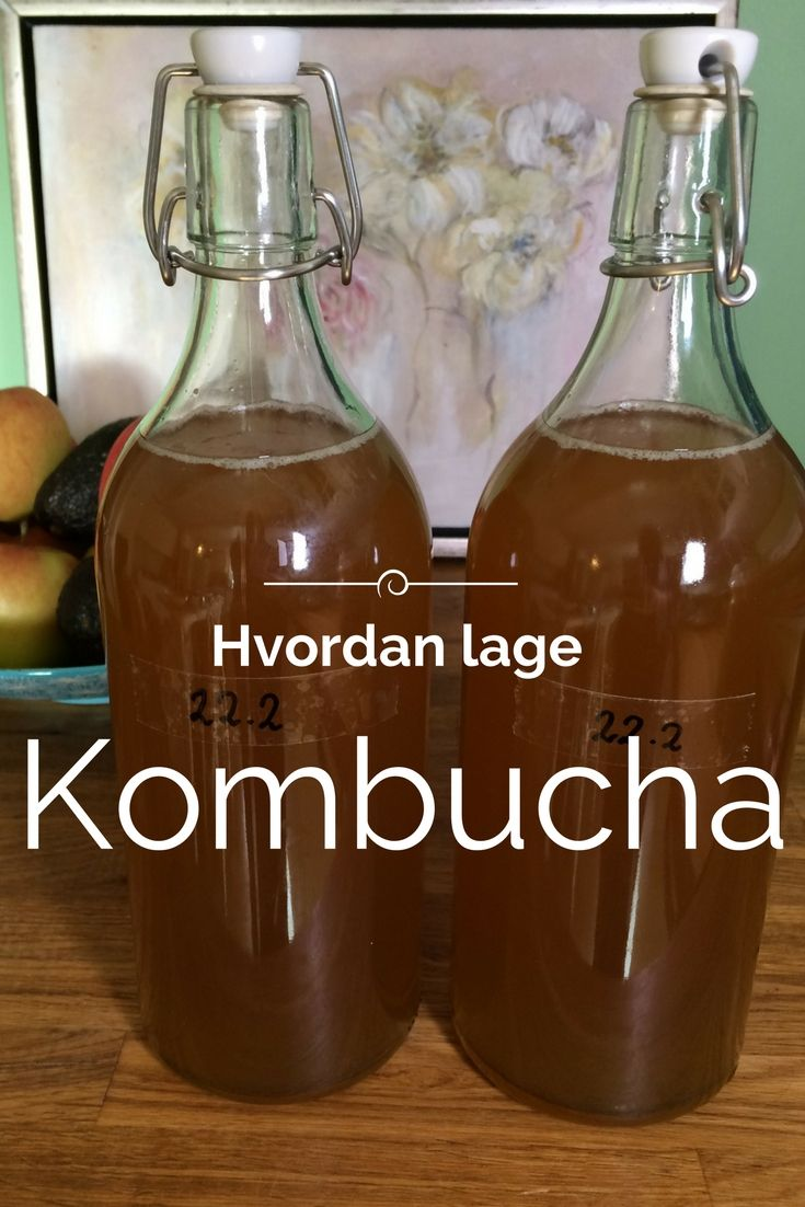 Hvorfor drikker man kombucha? Jo, fordi den inneholder probiotika, enzymer, aminosyrer og vitaminer, dessuten er det en nydelig leskende ...