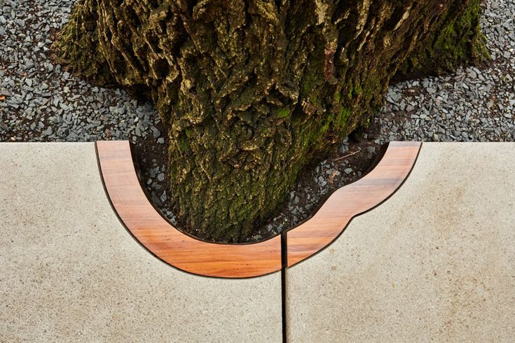 CityDeskStudio have designed a path with precast white concrete pavers, that have been carved out to protect a Red Oak tree. #Landscaping #Garden #Path