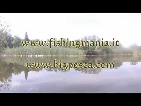 Spinning al luccio con gli snodati | Fishingmania.it