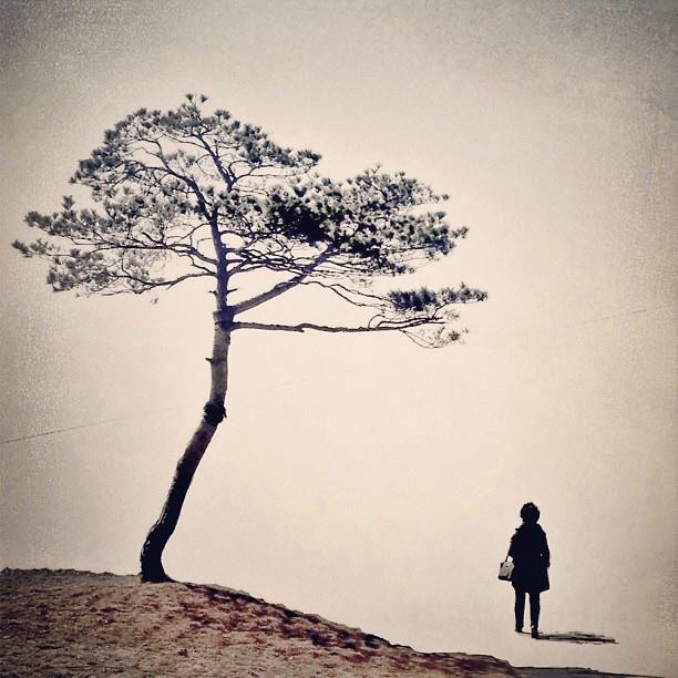 .@June Kuiper J   Mother   Webstagram - the best Instagram viewer