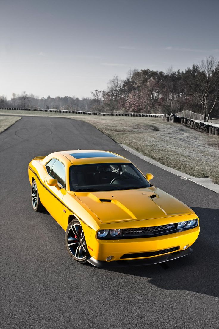 2012 dodge challenger srt8 392 yellow jacket attracting a lot of bees great color