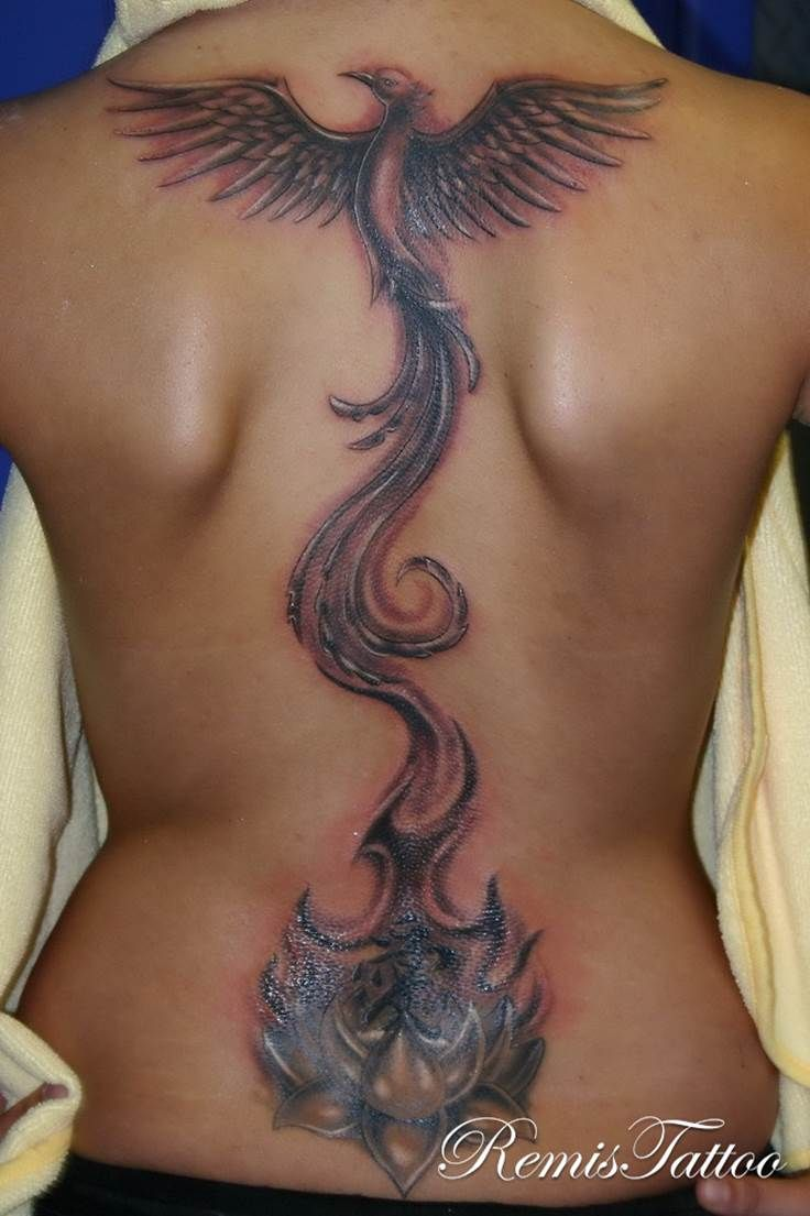Phoenix Rising From Lotus On The Back