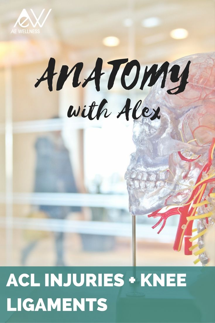 What do 4-time Superbowl winner Tom Brady, USA women's World Cup winner Alex Morgan, and Rob Gronkowski have in common?   They've all suffered from ACL injury!   The latest episode of Anatomy with Alex covers: // What are the 4 ligaments of the knee // How do you know when you've injured the ACL // Why women are more likely than men to tear an ACL // And if surgery is really the best option for all ACL or MCL injuries