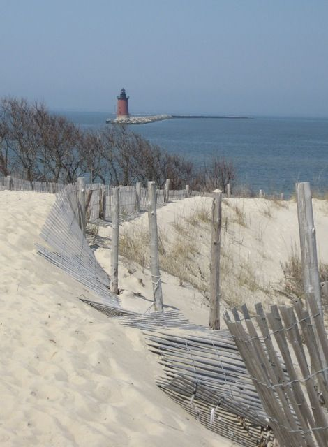 Cape Henlopen State Park, Delaware. Great place just to walk in the sand