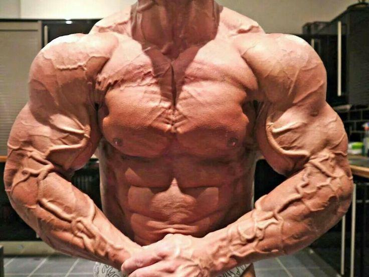 Hard rock muscle | bodybuilding dario | Pinterest | Hard