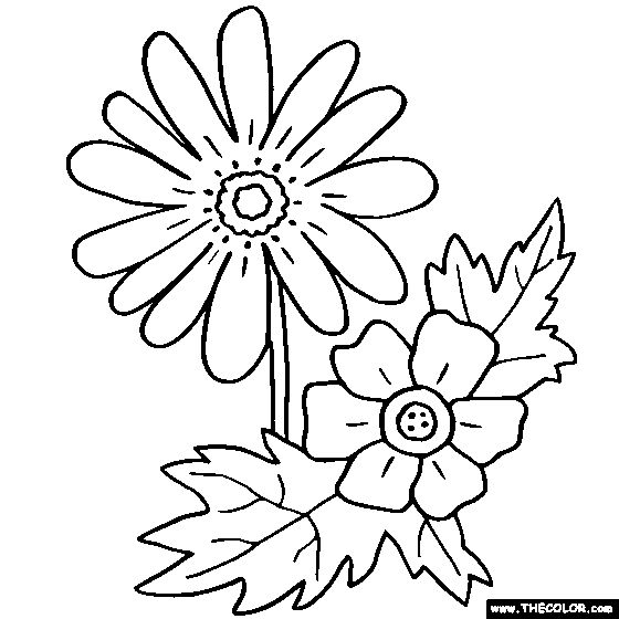 find this pin and more on coloring flowers by viveka25