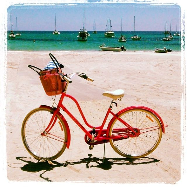 Gorgeous Day for a leisurely bike ride ~ Margaret River, WA