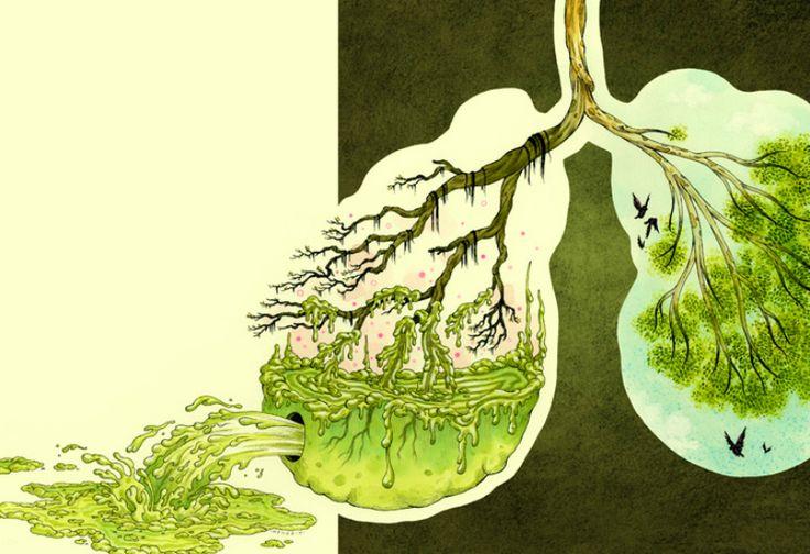 Картинки по запросу Как очистить легкие после курения: 4 способа, которые выведут токсины из организма!
