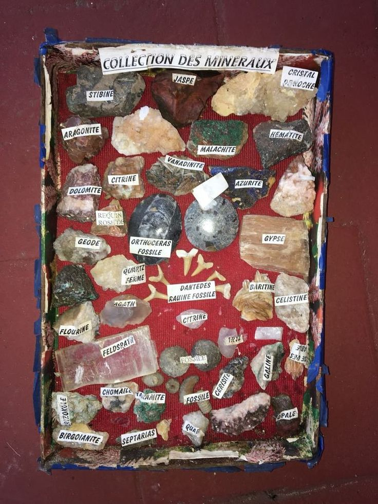 Natural-Beautiful-Rock-Very-rare-40-piece-They-are-all-old-and-charming  Natura