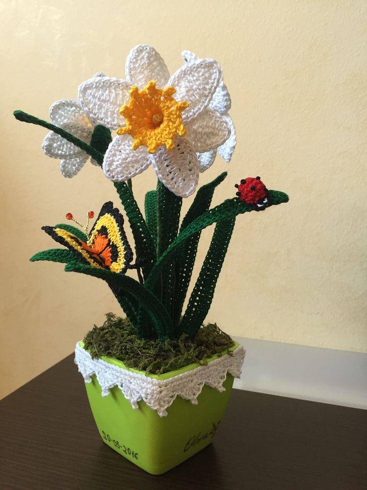 Narcisi, farfalla e coccinella