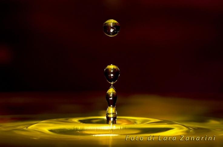 Vincitore Sezione WHAT maggio – Lara Zanarini: gocce d'acqua ad una ad una, formano uno sconfinato valore...