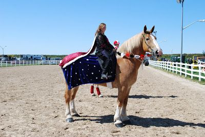 9 best horse costumes images on pinterest horse halloween costumes usa solutioingenieria Gallery