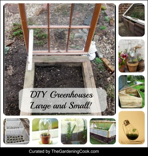 DIY greenhouse ideas  http://thegardeningcook.com/diy-greenhouses/