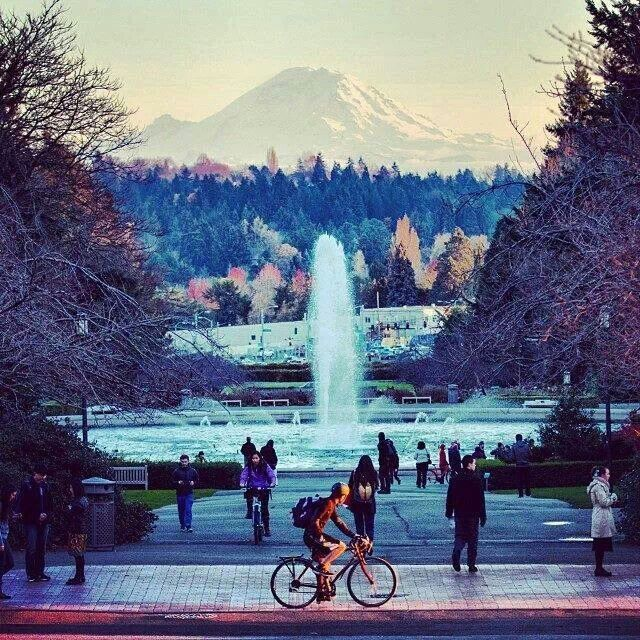 Best Places To Stay Near Seattle Wa: 17 Best Images About Visit Seattle Washington On Pinterest