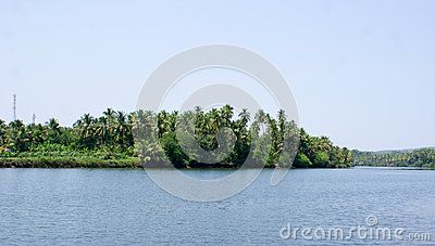Scenic view of backwaters of Kerala at Alleppey. with coconut trees all along it's banks