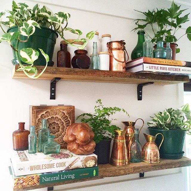 I'm making coffee ya'll...& this little situation makes me very happy. My baby jungle is very happy in the morning light ✨ Please consider this my Monday morning kitchen shelfie ✌️❤️ #myplantlovinghome Mais