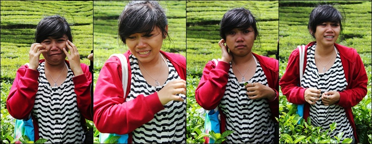 me and crying, tea garden, Indonesia