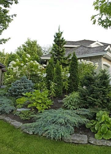 Good variety of color landscaping with evergreens. *This is what I want in the front yard to replace most of the grass.*