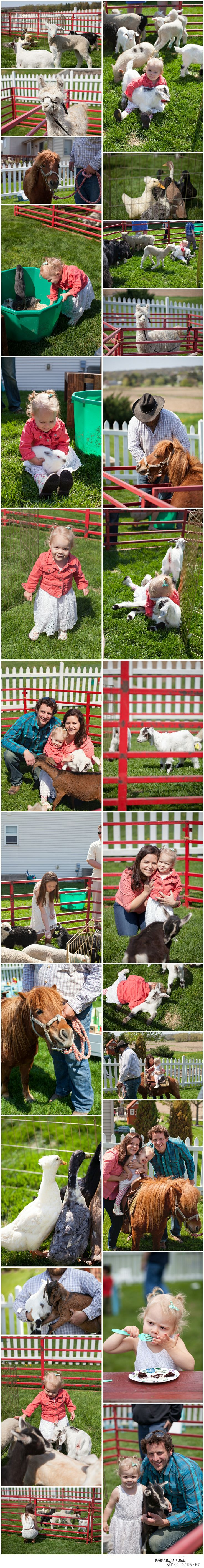 Girly Petting Zoo / Farm Themed birthday party, 2 year old birthday