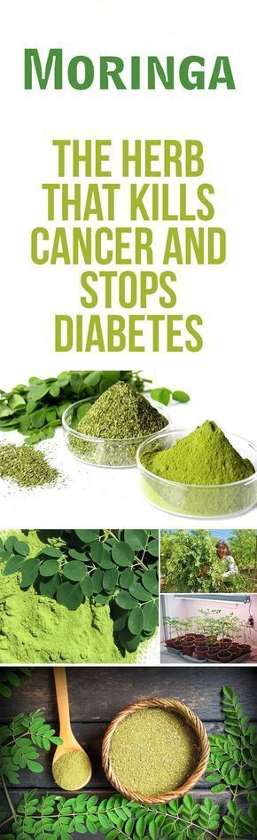 #Moringa #Health #Cancer
