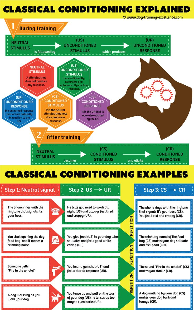 Classical Conditioning: a basic form of learning.