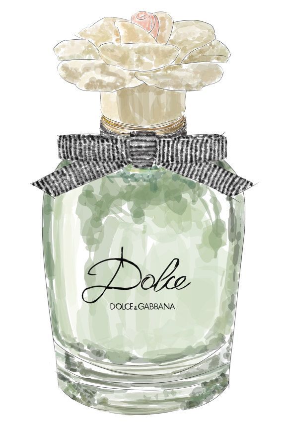 Dolce And Gabbana Perfume Original Illustration By