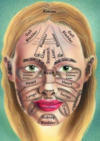 Banish breakouts using Face Mapping... Very interesting. Each area of the face is correlated to an organ or major body part....