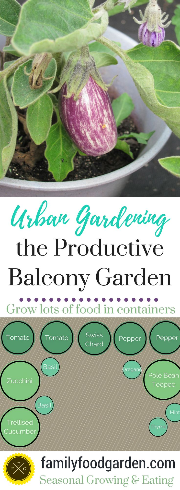 Urban gardening ideas containers - The Productive Balcony Garden