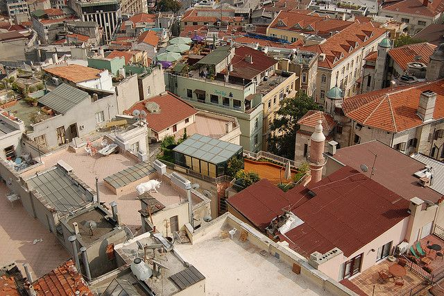 Istanbul roofs by tgraham, via Flickr