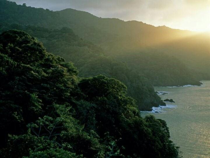 Trinidad and Tobago  Photograph by David Alan Harvey