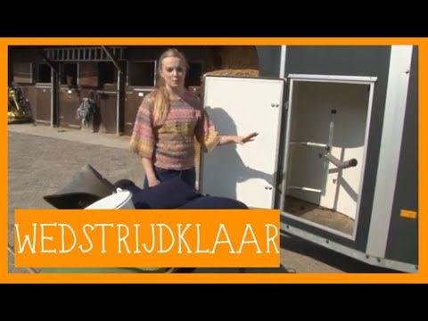 Wedstrijd klaar   PaardenpraatTV - YouTube