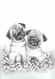Best 25 Dibujos de animales tiernos ideas on Pinterest  Dibujos