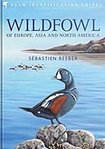 """Enter to win a Bloomsbury hamper of top-notch Helm Identification Guides, including this copy of """"Wildfowl of Europe, Asia and North America"""" by Sebastien Reeber! Enter now at http://www.rockjumperbirding.com/competitions/bloomsbury-book-hamper-competition-2016/ #birds #birding #birdwatching #nature #wildlife"""