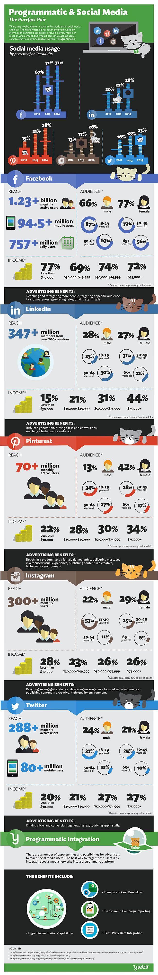 Programmatic-Social-Media-Infographic_650px