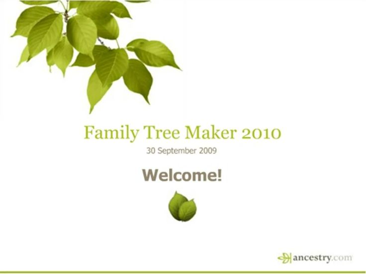 The  Best Family Tree Maker Ideas On   Rose Family