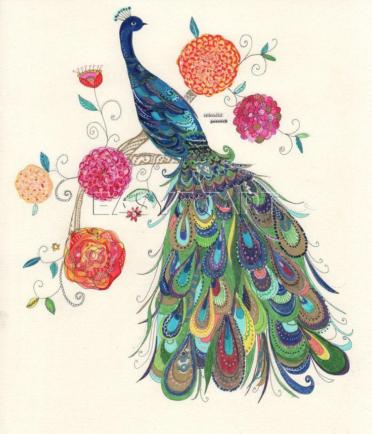 peacock art images | Beautiful Peacock - Kim Anderson Prints - Easyart.com