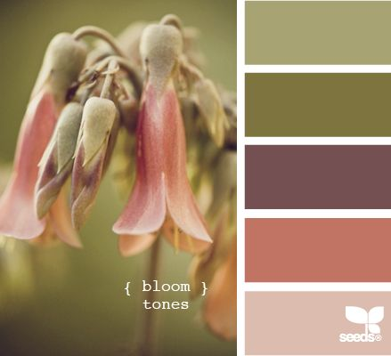 Amazing colour combo inspiration from what to wear, decorating the house, card making and make-up This palette is called; bloom tones.