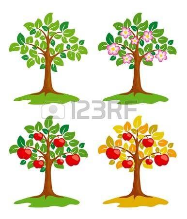 strom%3A+Jablo%C5%88+v+r%C5%AFzn%C3%BDch+ro%C4%8Dn%C3%ADch+obdob%C3%ADch.
