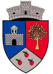 ROU SB Slimnic CoA - Galeria de steme și steaguri ale județului Sibiu - Wikipedia